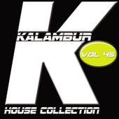 Kalambur House Collection, Vol. 45 de Various Artists