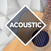 Acoustic: The Collection de Various Artists