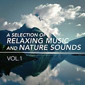 A Selection of Relaxing Music and Nature Sounds, Vol. 1 de Various Artists