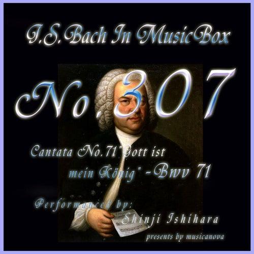 Cantata No. 71, ''Gott ist mein Konig'', BWV 71 by Shinji Ishihara