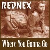 Where You Gonna Go (Album Version 2000) von Rednex