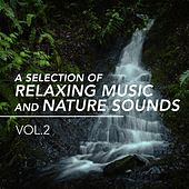 A Selection of Relaxing Music and Nature Sounds, Vol. 2 de Various Artists