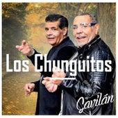 Gavilán by Los Chunguitos