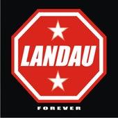 Forever de Landau