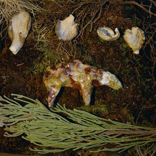 Barleycorn by Johnny Flynn