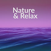 Nature & Relax – Nature Sounds, Relaxing Ocean Waves, Deep Sleep, Water Sounds, Soothing Guitar, Healing Piano de Healing Sounds for Deep Sleep and Relaxation