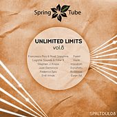Unlimited Limits, Vol.8 by Various Artists