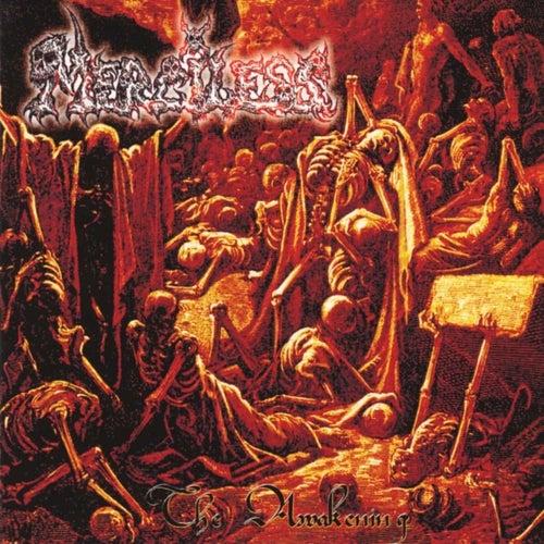 The awakening by Merciless