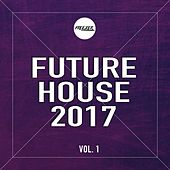 Future House 2017, Vol. 1 von Various Artists