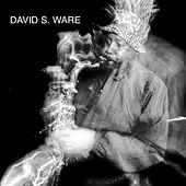 Live in the Netherlands by David S. Ware