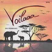 Des Promesses von Voilaaa