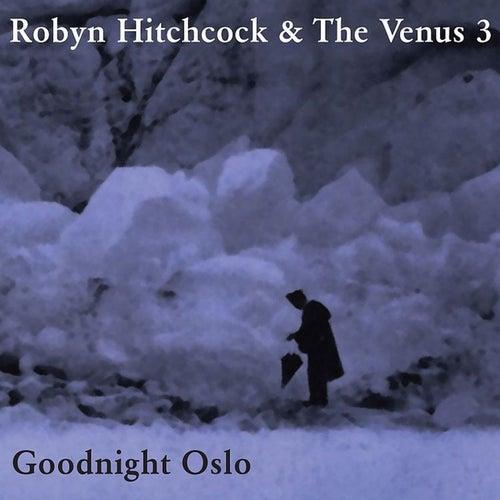 Goodnight Oslo by Robyn Hitchcock