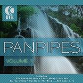 Favourite Pan Pipe Melodies - Vol. 1 by Pierre Belmonde