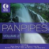Favourite Pan Pipe Melodies - Vol. 2 by Pierre Belmonde