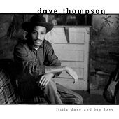 Little Dave and Big Love by Dave Thompson