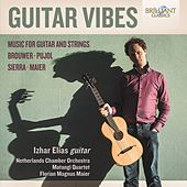 Guitar Vibes: Music for Guitar and Strings by Various Artists