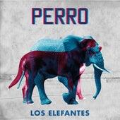 Perro de Los Elefantes