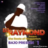 Dj Raymond Presenta Bajo Presion by Various Artists
