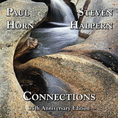 Connections by Paul Horn