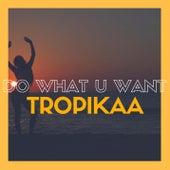 Do What U Want by Tropikaa