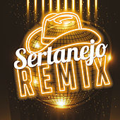 Sertanejo Remix (Remix) de Various Artists