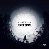 Freedom II by Rameses B