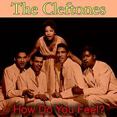 How Do You Feel? von The Cleftones