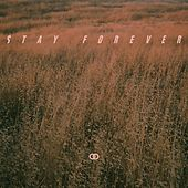 Stay Forever by Ookay