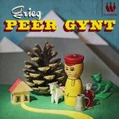 Peer Gynt by Various Artists