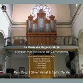 La route des orgues, Vol. 14 (Orgue Merklin de Commentry) von Various Artists
