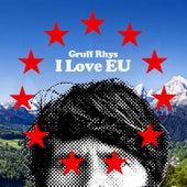 I Love Eu by Gruff Rhys