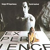 Songs Of Experience von David Axelrod