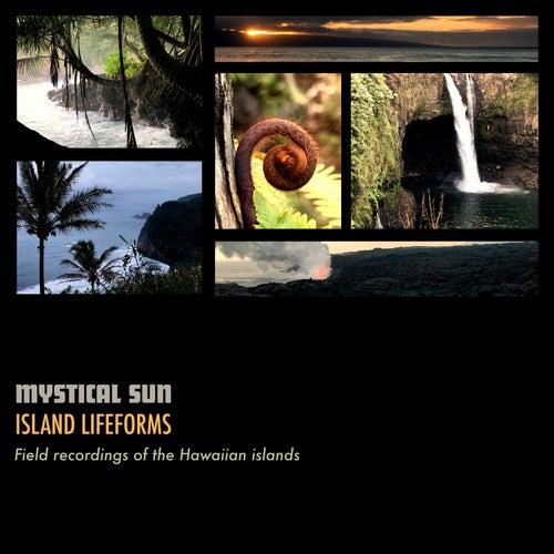 Island Lifeforms by Mystical Sun