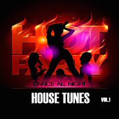 Hot Party House Tunes, Vol. 1 von Various Artists