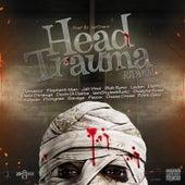 Head Trauma Riddim by Various Artists