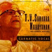 T. V. Sankaranarayanan - The Carnatic Maestro by Kannan