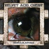 Neuralblastoma by Velvet Acid Christ