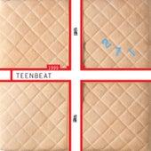 1999 Teenbeat Sampler by Various Artists