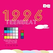 1996 Teenbeat Sampler by Various Artists