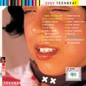 2003 Teenbeat Sampler by Various Artists
