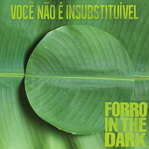 Você Não É Insubstituível by Forro In The Dark