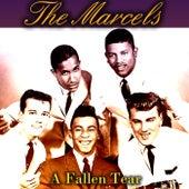 A Fallen Tear von The Marcels