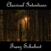 Instrumental Intentions: Franz Schubert by Franz Schubert