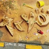 Grain de sable de Tryo
