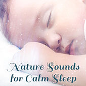 Nature Sounds for Calm Sleep – Music for Kids, Lullabies to Bed, Calm Newborn, Sweet Dreams, Baby Sleep Music by Bedtime Baby