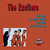 The Exciters (29 Success) (1962) de The Exciters