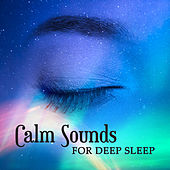 Calm Sounds for Deep Sleep – Rest All Night, Dreaming Hours, Relaxing Moments, Calm Sleeping by Deep Sleep Music Academy