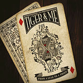 From A Liar To A Thief by The Tiger and Me