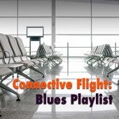 Connective Flight: Blues Playlist de Various Artists