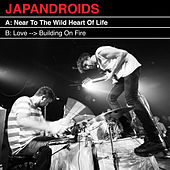 Near To The Wild Heart Of Life de Japandroids